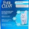 EVER CLEAN - EVER FRESH - 25LB